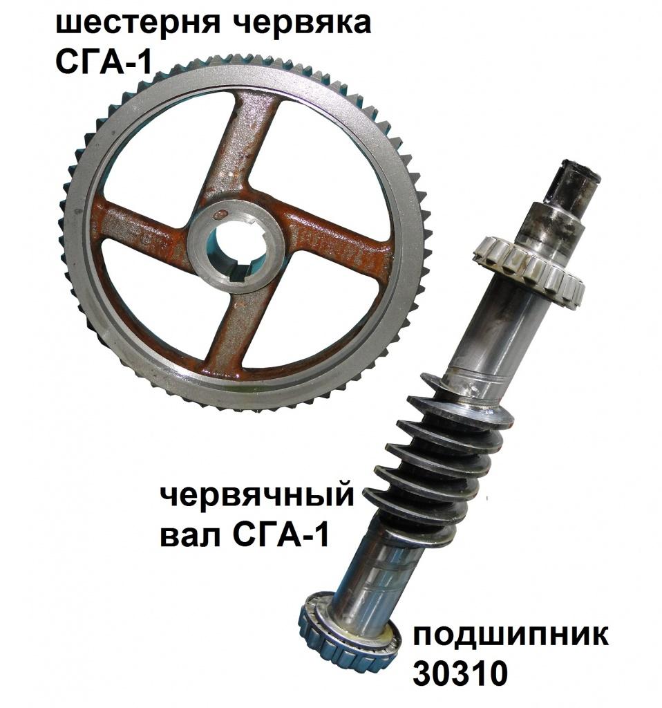 val-chervyka-i-scesternya-chervyaka-sga-1.jpg